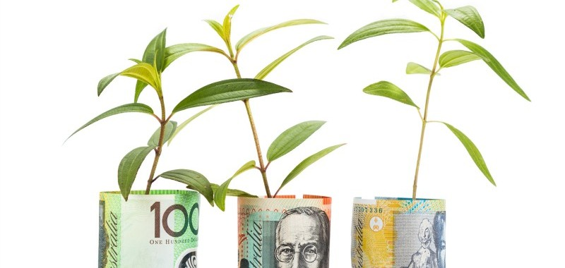 Concept of green plant grow on Australian Dollar currency note.